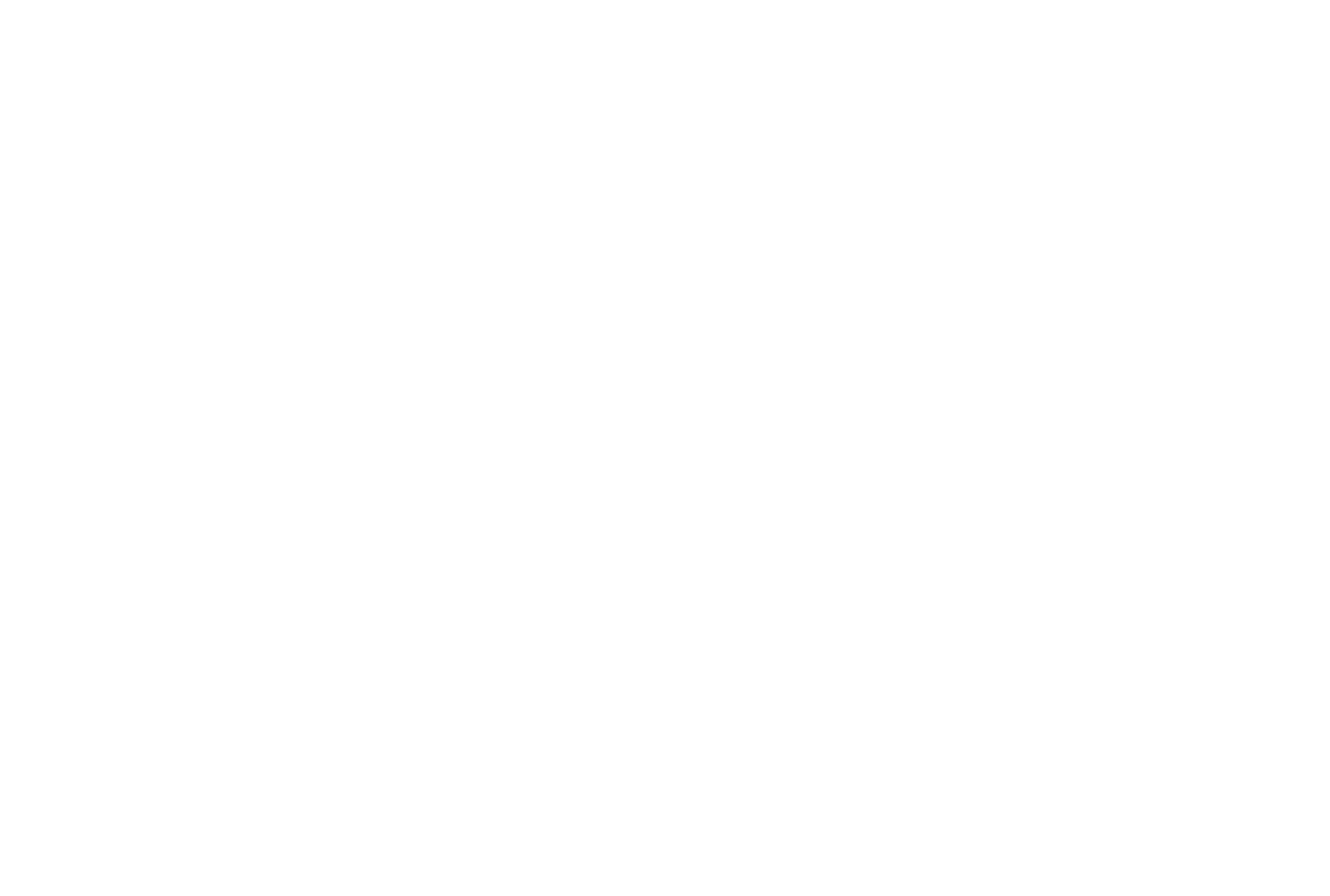 Frankl24_weiss