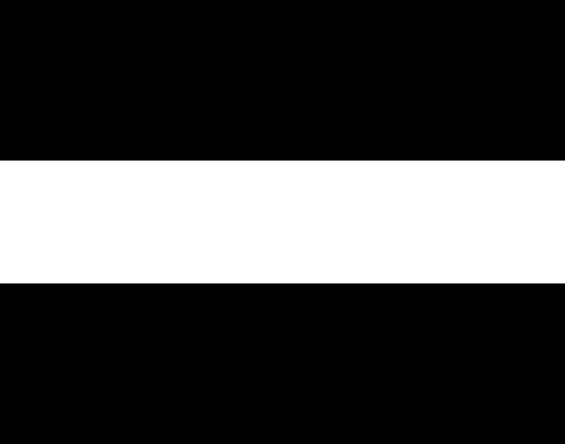 Rieber2